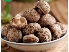 香菇干货花菇秋栽茶花菇椴木香菇小香菇250g新鲜上市