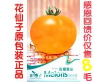 b021花仙子甜橙番茄种子花园阳台/蔬菜种子/蔬果种子 菜籽20粒